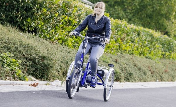 Get an Adult Tricycle - Your List