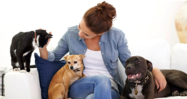 Tips for Finding the Best Pet Sitter